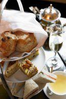 High Tea – Koetstocht – Borrel in Antwerpen